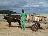 LA BENEFICENZA DELLA SCUDERIA IN MADAGASCAR 2013